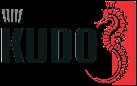кудо_лого